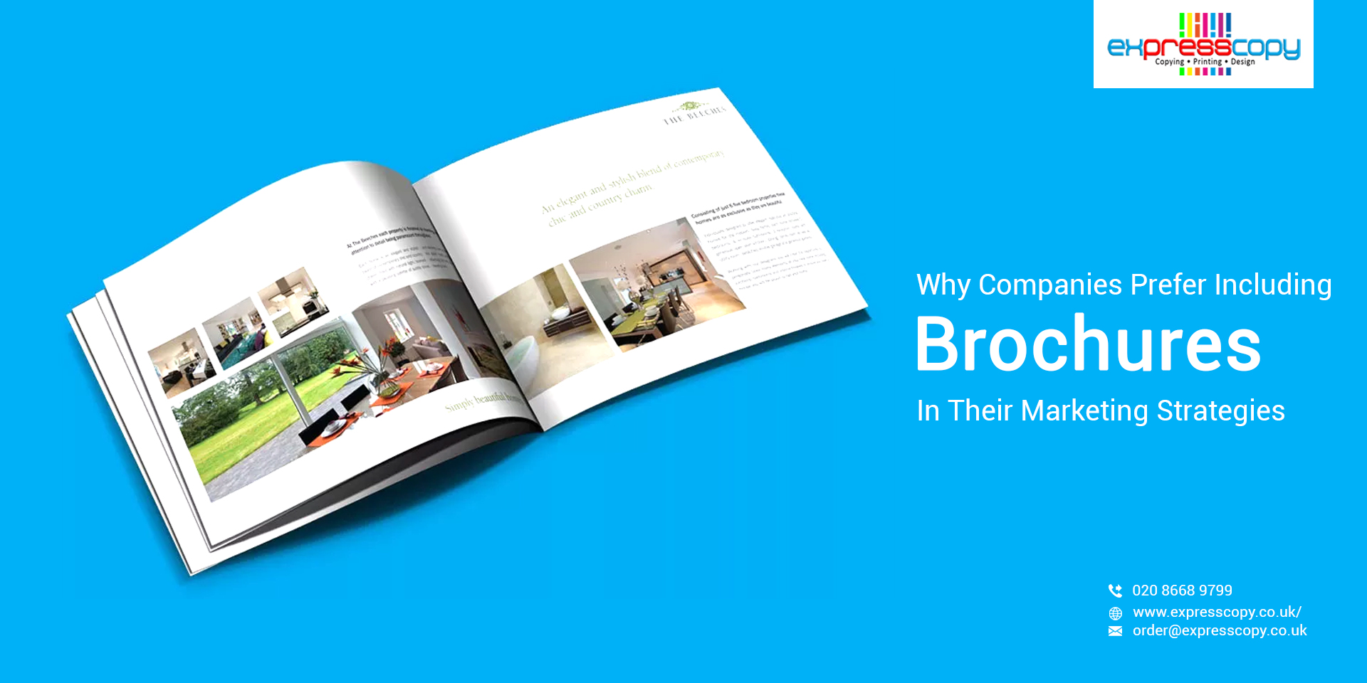Why Companies Prefer Including Brochures In Their Marketing Strategies